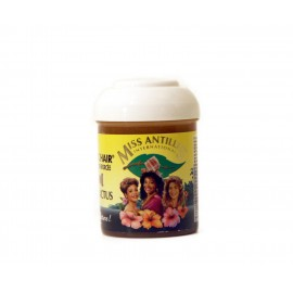 Miss Antilles Fantastic hair - Aloe and cactus phytoreinforced pomade