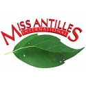 Miss Antilles International