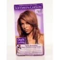 Dark And Lovely Color Chestnut Blonde 380