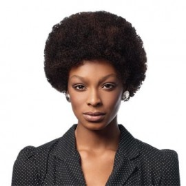 Sleek Wig Fashion AFRO